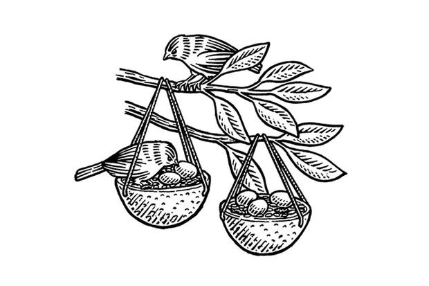 birdfeeder_step4-a847ef5