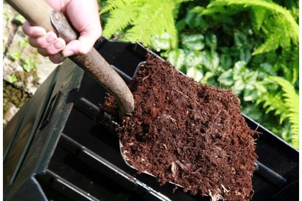 compost_iStock_623-a229ebf
