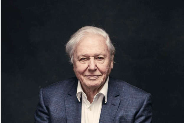 Sir David will bring 60 years of film-making experience – and those iconic sotto voce tones – to the classroom.