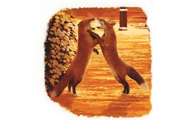 foxfight_sjc_623-712b2bd