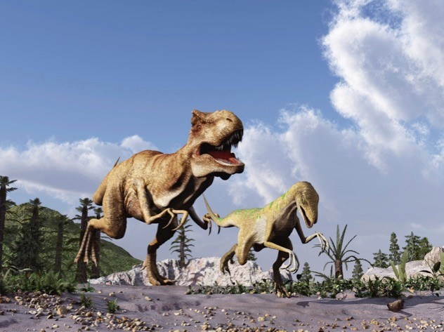 Tyrannosaurus rex's speed was compromised by its weight. © estt/iStock