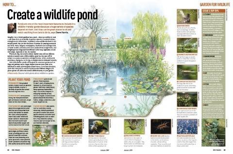 jan_gardening_pond_article-a99963a