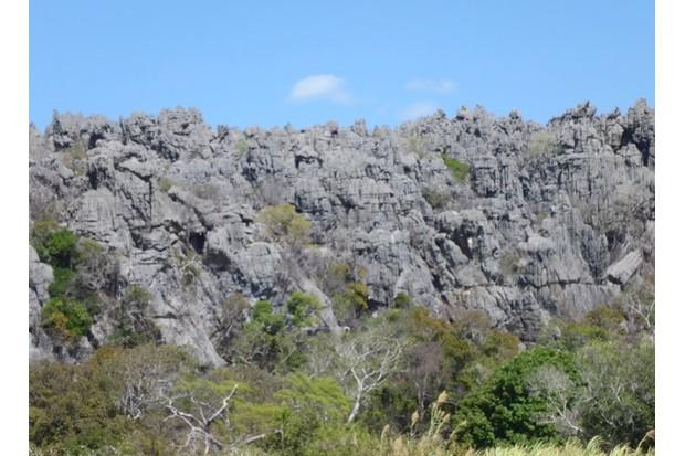 landscape623-6246c44