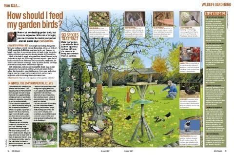 oct_2009_gardening_article-9a2feb7