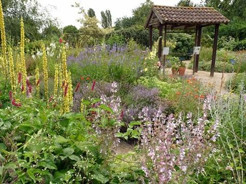 organic-garden-ryton_480_0-6fedb39
