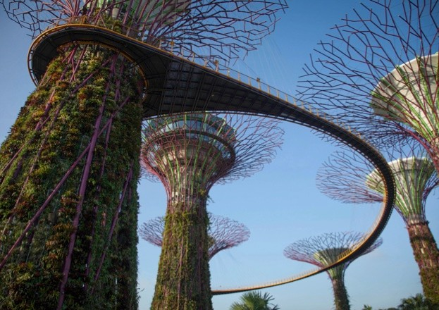 'Supertrees' in Singapore feature in the Cities episode of Planet Earth II, airing on Sunday 11 December 2016 at 8pm on BBC One. ©Tom Hugh-Jones/BBC NHU