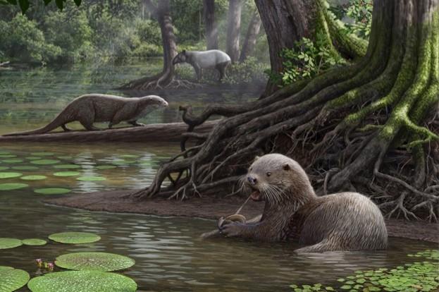 Reconstruction of the fossil otter in its paleohabitat © Mauricio Anton