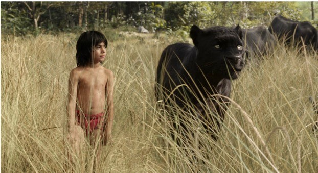 In The Jungle Book, Bagheera the panther protects Mowgli from Shere Khan the tiger – in reality, a black leopard wouldn't be quite as amicable. © 2016 Disney Enterprises