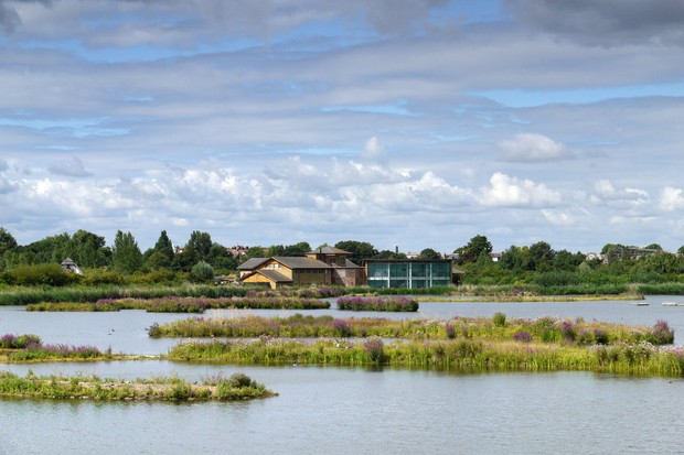 London Wetland Centre. © WWT