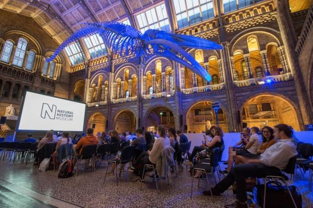 Movie nights at the NHM. © Natural History Museum Trustees