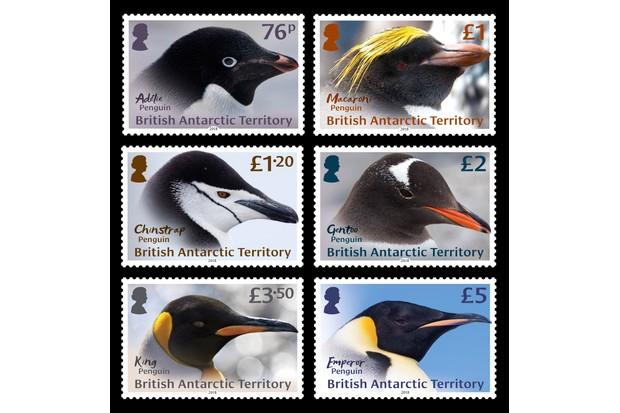 The adult penguins stamp set.