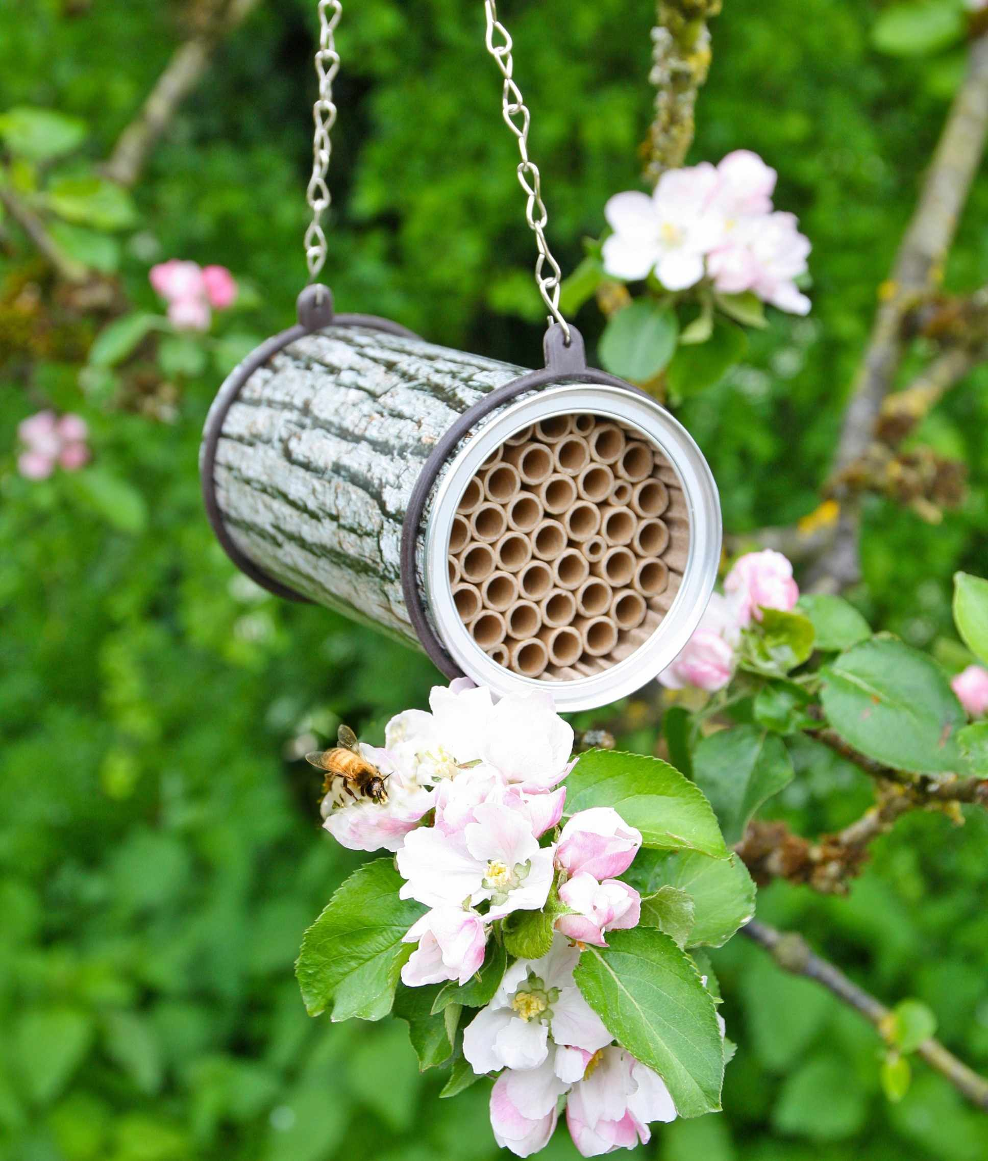 Bee nester_competition prize