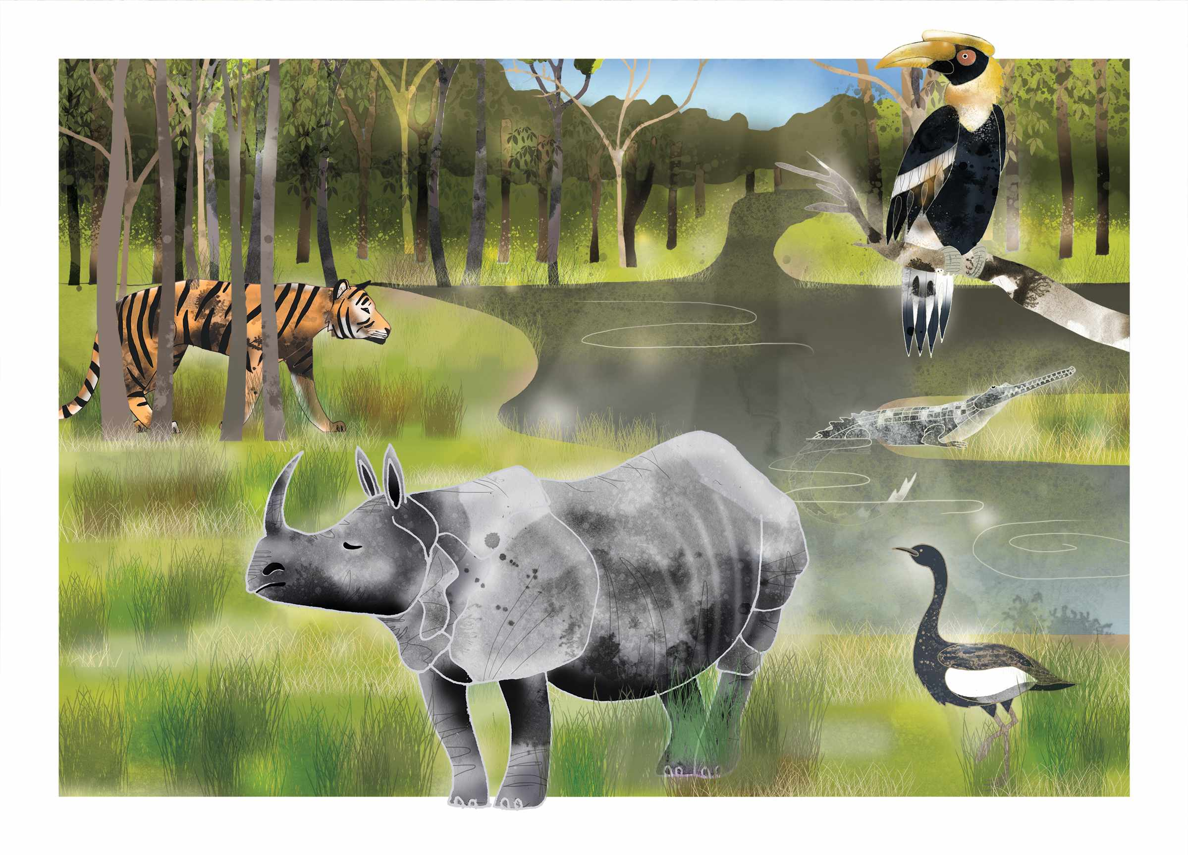 Chitwan_Illustration_Final_Flat_CMYK