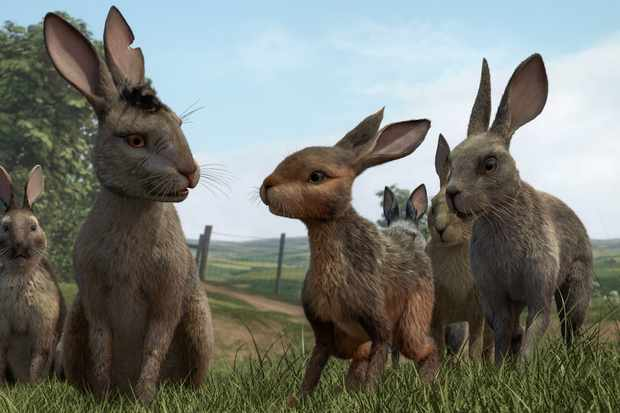 Fiver convinces Bigwig to follow his plan and head for Watership Down.
