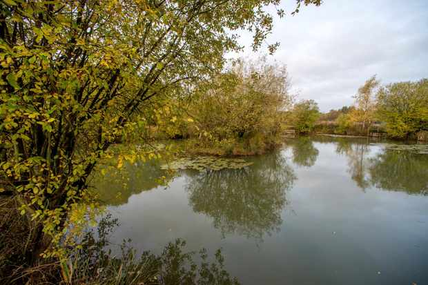 Pond at Lodge Hill site, Medway, Kent. © Jodie Randall/RSPB