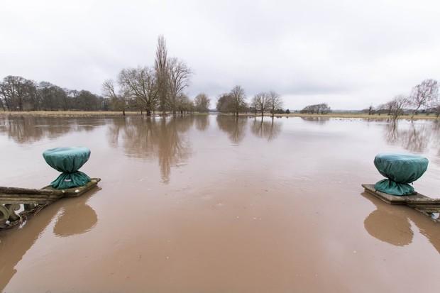 Charlecote flood. © Jana Eastwood