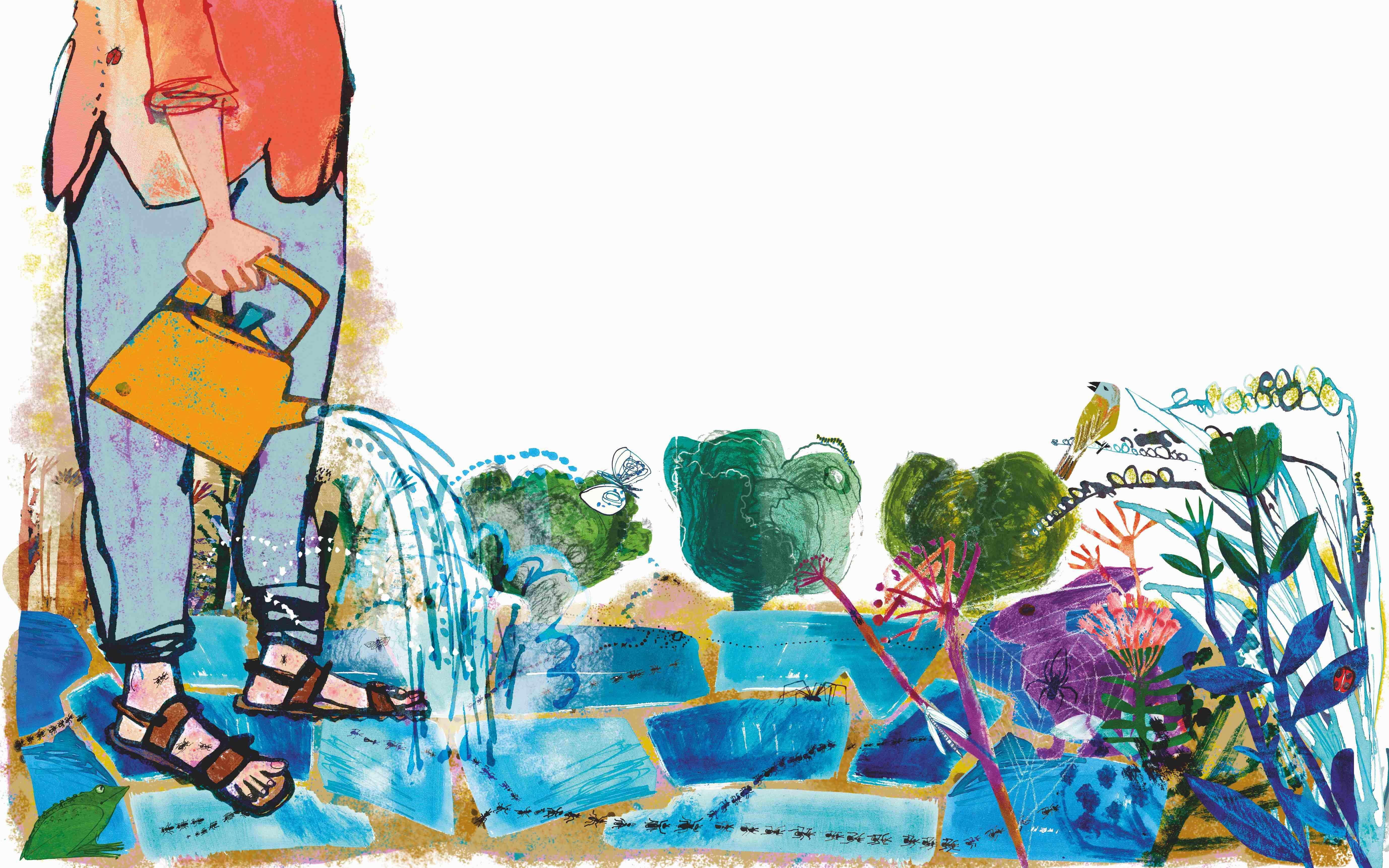 Illustration by Jill Calder/Central Illustration