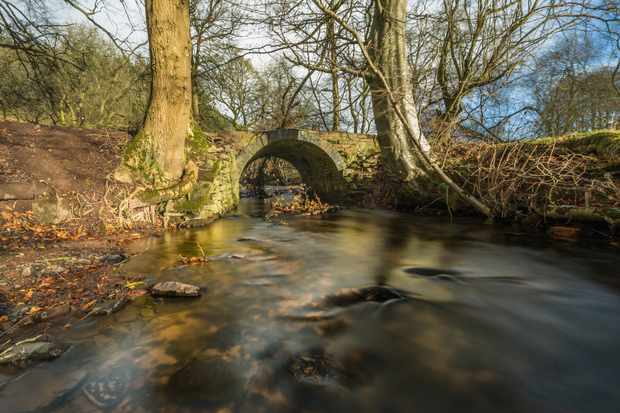 In winter, this ancient bridge over the river is a quiet, contemplative spot, giving little hint of how it supports new life for dippers year after year. © Andrew Fusek Peters