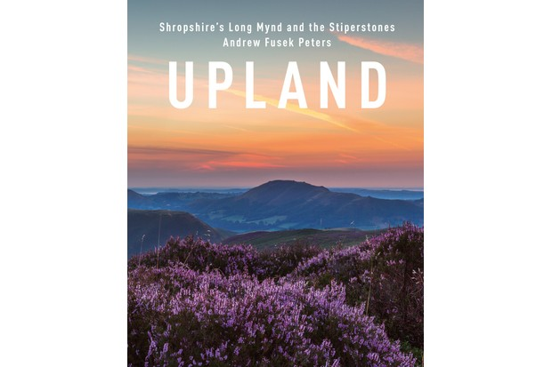 When the heather blooms in August, the whole Long Mynd turns purple and the best time to catch the views over Shropshire towards the far Wrekin is before dawn © Andrew Fusek Peters