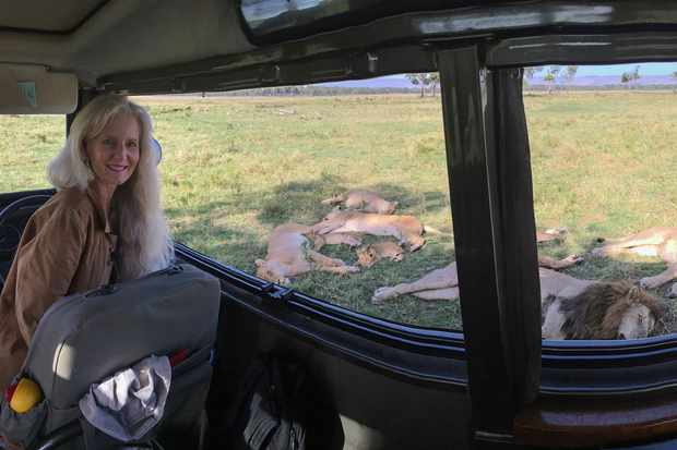 Angela Scott with lions sleeping around her car. © Animal Planet