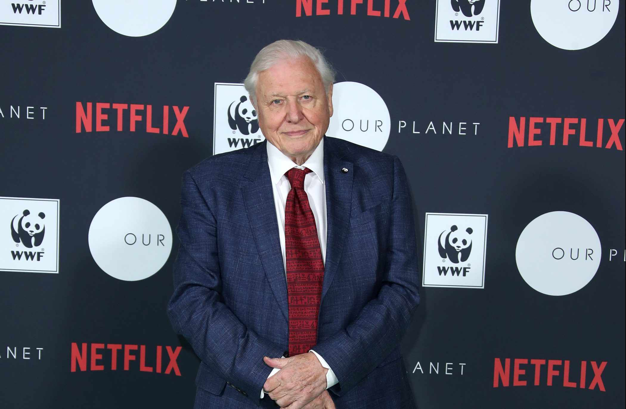 Sir David Attenborough at Netflix's Our Planet announcement at WWF's State of the Planet address at Westminster Hall. © Mike Marsland/Getty