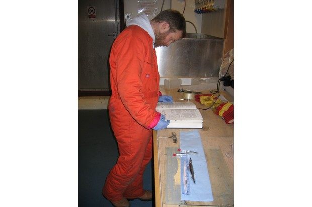 Will identifying an Antarctic fish on a research expedition to the Southern Ocean.
