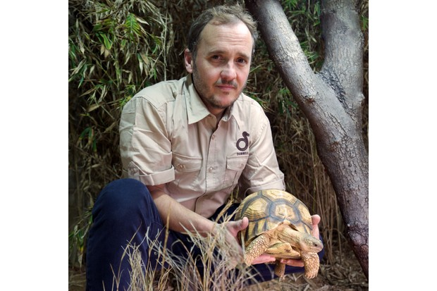 Rich Young with a Ploughshare tortoise. © Durrell Conservation Trust