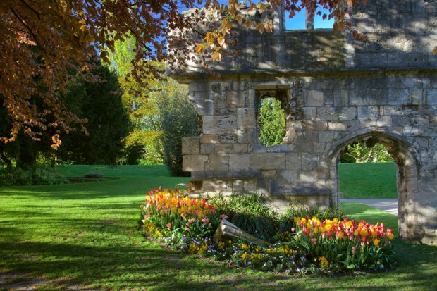 York museum gardens in bloom. © John Potter.