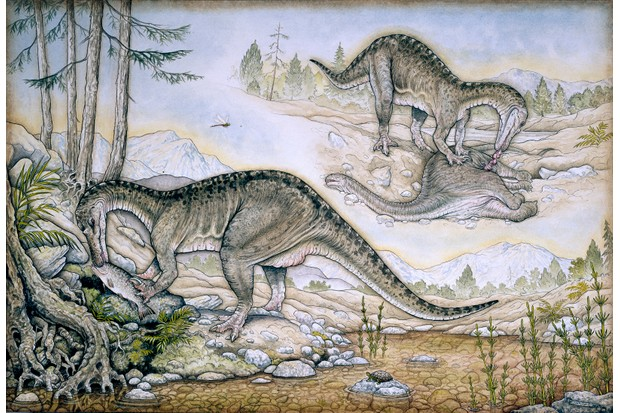 Baryonyx. © Trustees of the Natural History Museum