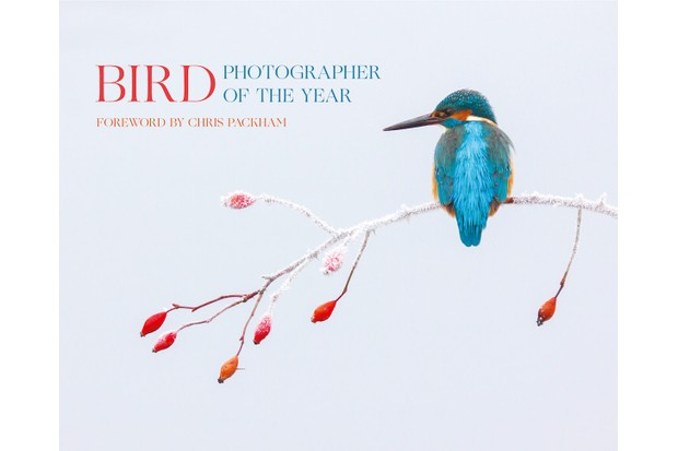 Bird Photographer of the Year 2017 book cover.