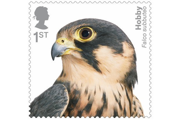 Bird of prey stamp collection - hobby. © Tim Flach/Royal Mail.