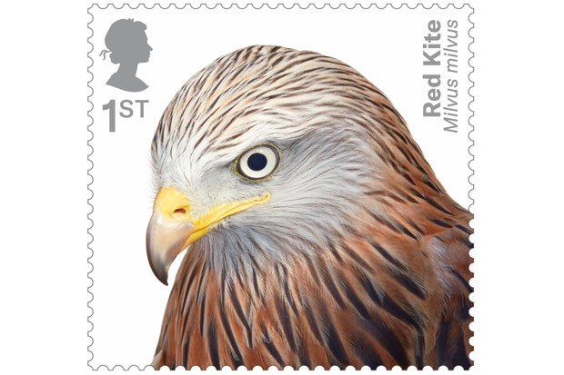 Birds of Prey Red Kite 400% stamp