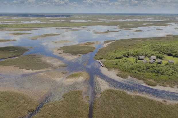 The famous Everglades wetland is the largest sub-tropical wilderness in the United States.