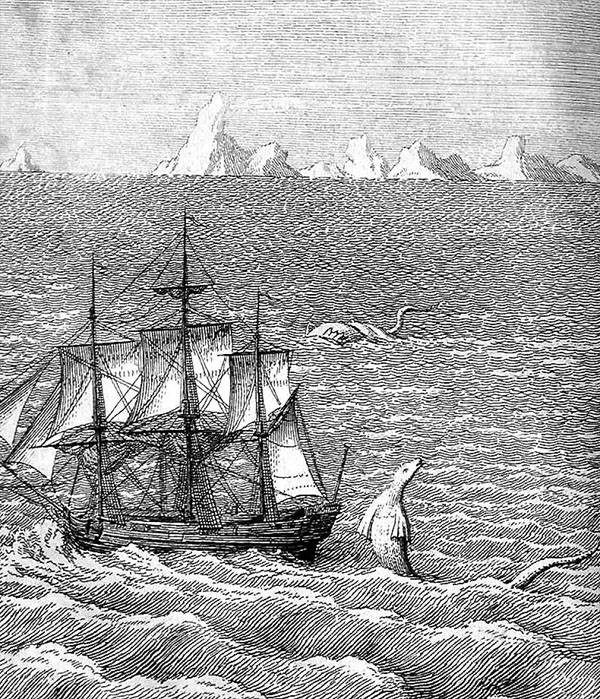 Image of a sea monster seen off Greenland in 1734