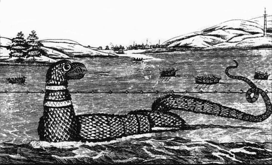 Image of a sea serpent seen off Gloucester, Massachusetts in 1817