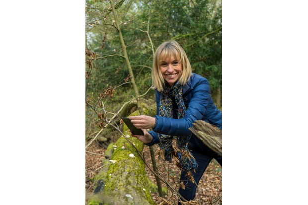 Michaela Strachan using iNaturalist.