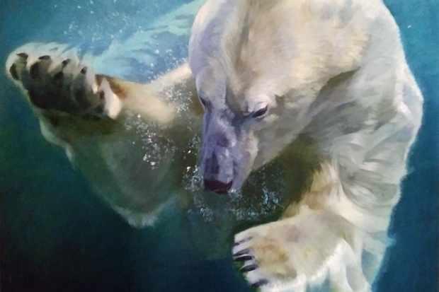 International art competition examines devastating human impact on wildlife