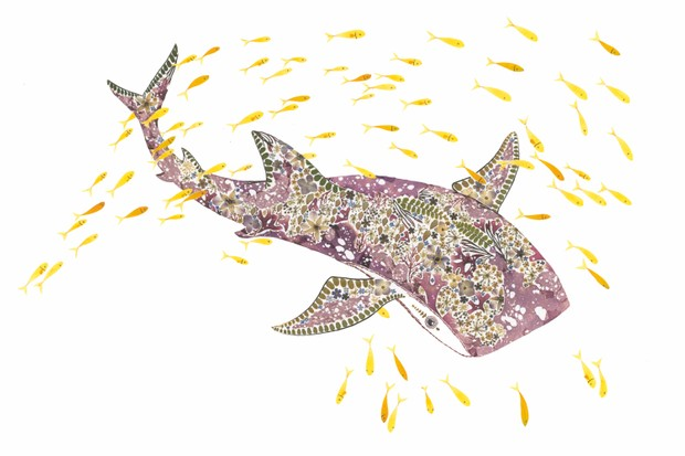 Whale shark. © Helen Ahpornsiri