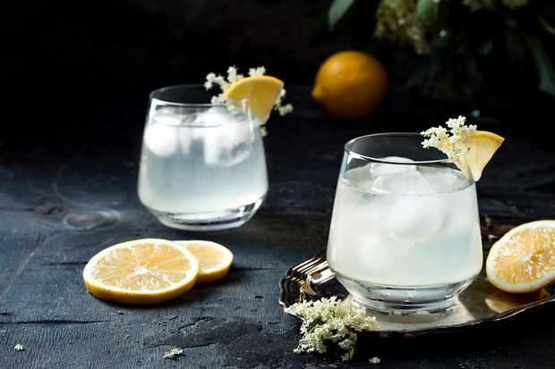 Elderflower gin is great with good quality tonic water and ice © Sveta Zarzamora/Getty