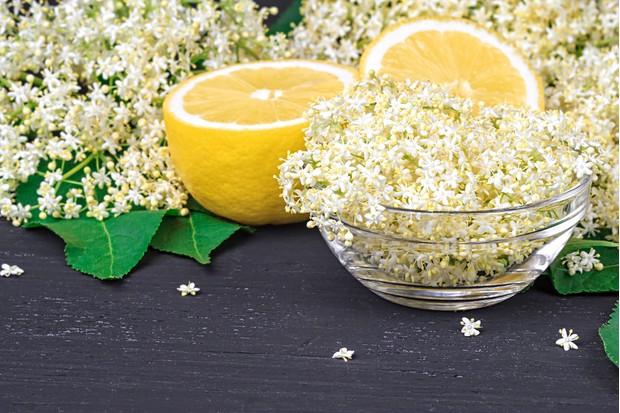 Elderflowers and lemon. © gigello/Getty
