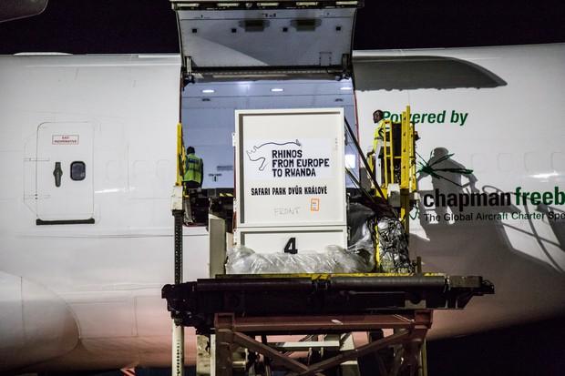 Off loading rhino crates at Kigali International Airport. © Scott Ramsay/African Parks