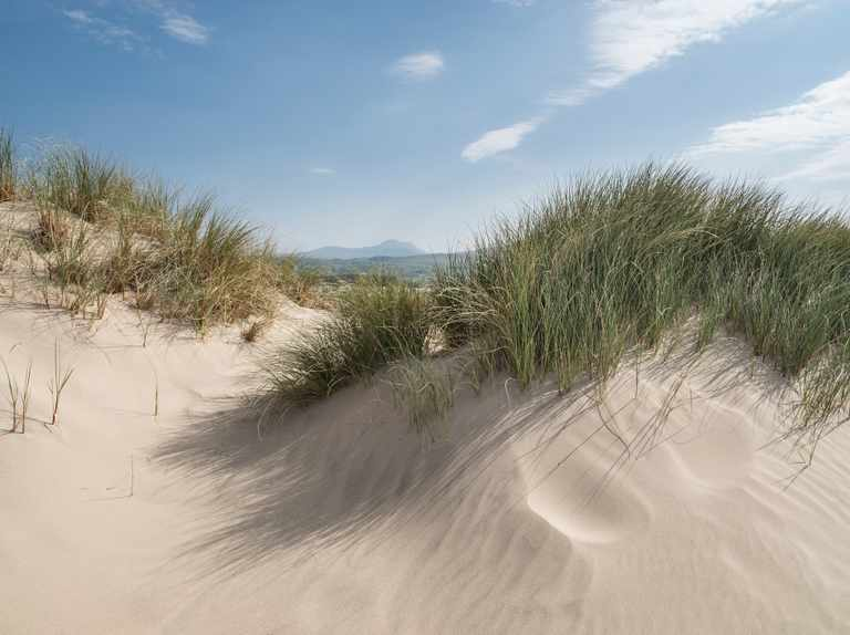 Funding from the National Lottery aims to save threatened sand dunes