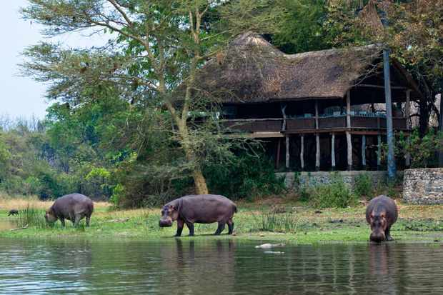 Mvuu Lodge – Central African Wilderness Safaris – Advertisement