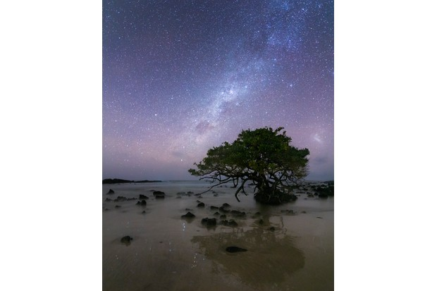 Overall 2nd Place and winner of the Landscape category - 'Isabela' by © Federico Viegener/Galápagos Conservation Trust
