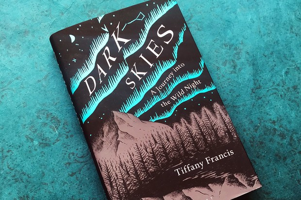 Dark Skies by Tiffany Francis