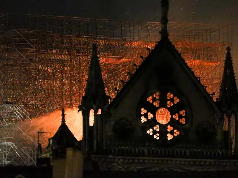 My Opinion: Mark Carwardine on the Notre Dame fire