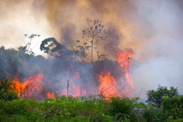 Brazilian Amazon Forest burning to open space for pasture. © Pedarilhos/Getty
