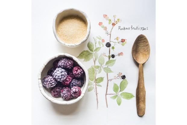 Making blackberry syrup. © Emma Mitchell