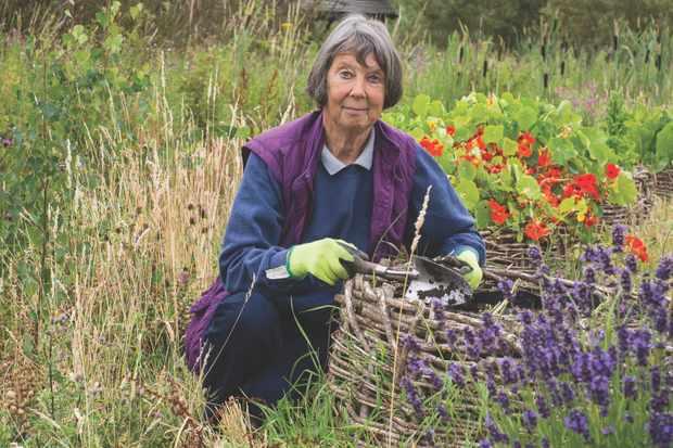 Mindful gardening. © Matthew Roberts