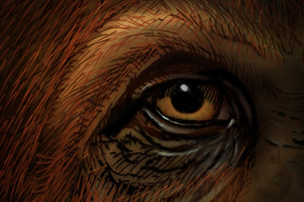 11-Gigantopithecus-eyeonly-1029-imageOnly-1200